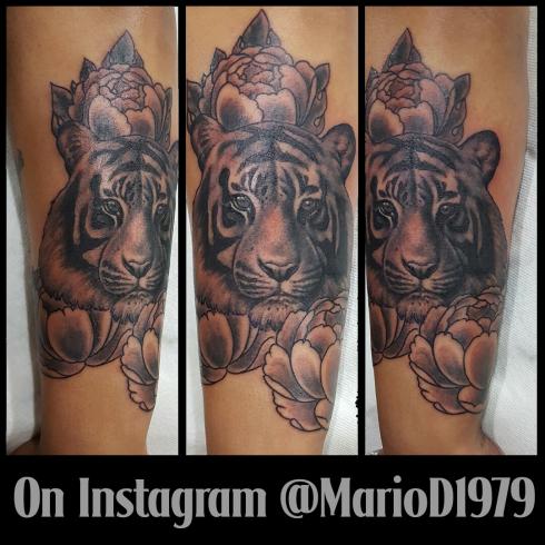 tiger peony portrait tattoo